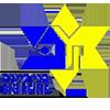 לוגו מכבי בני ריינה